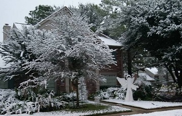 Snow in Houston, Texas, December 2017 by Ms P Designs USA