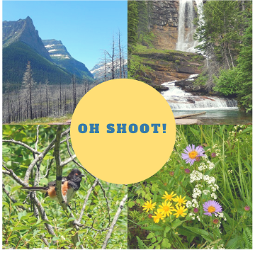 Oh Shoot! Volume 4 by Sharon @ Ms P Designs USA