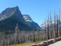 St Mary Falls Trailhead July 2019 by Sharon @ Ms P Designs USA