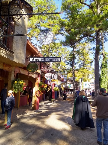 Ren Fest Morning by Sharon @ Ms P Designs USA