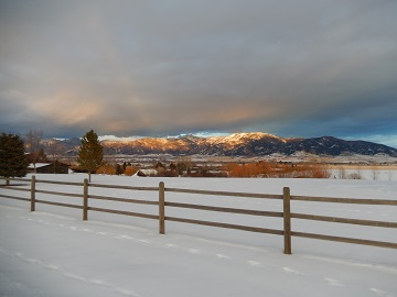 Winter View by Sharon @ Ms P Designs USA